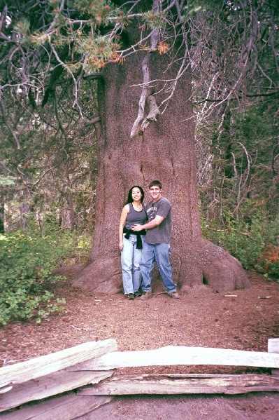 Ben and Pauline in front of the big tree.