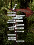 Random Sign along the trail