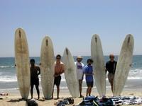 Highlight for Album: Surf